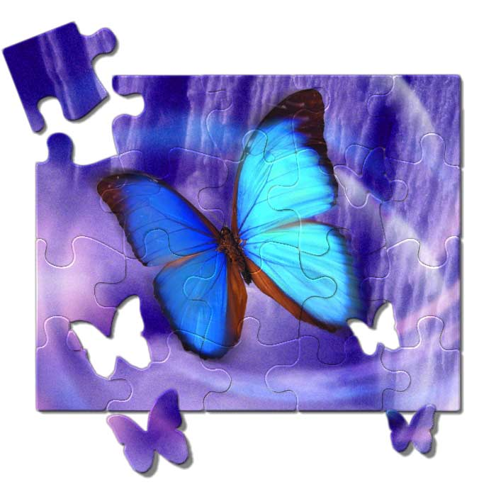 butterfly_puzzle
